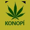 Odkaz na aktualitu Konopí pro léčebné účely vlékárně VFN