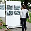 Odkaz na událost VFN očima známé fotografky na Karlově náměstí